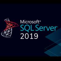 WIN SQL Std 2019 Sngl OLP GOV